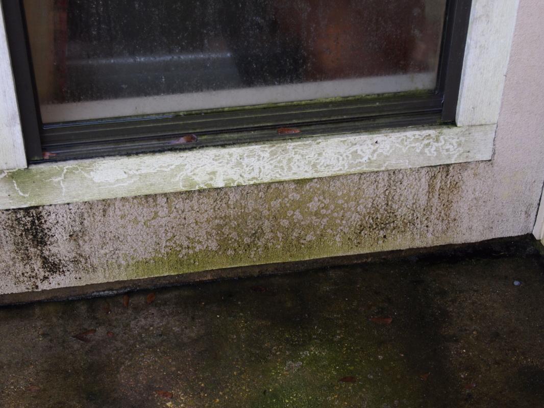 Cajun Soft Wash house Washing exterior soft power wash dirt stain