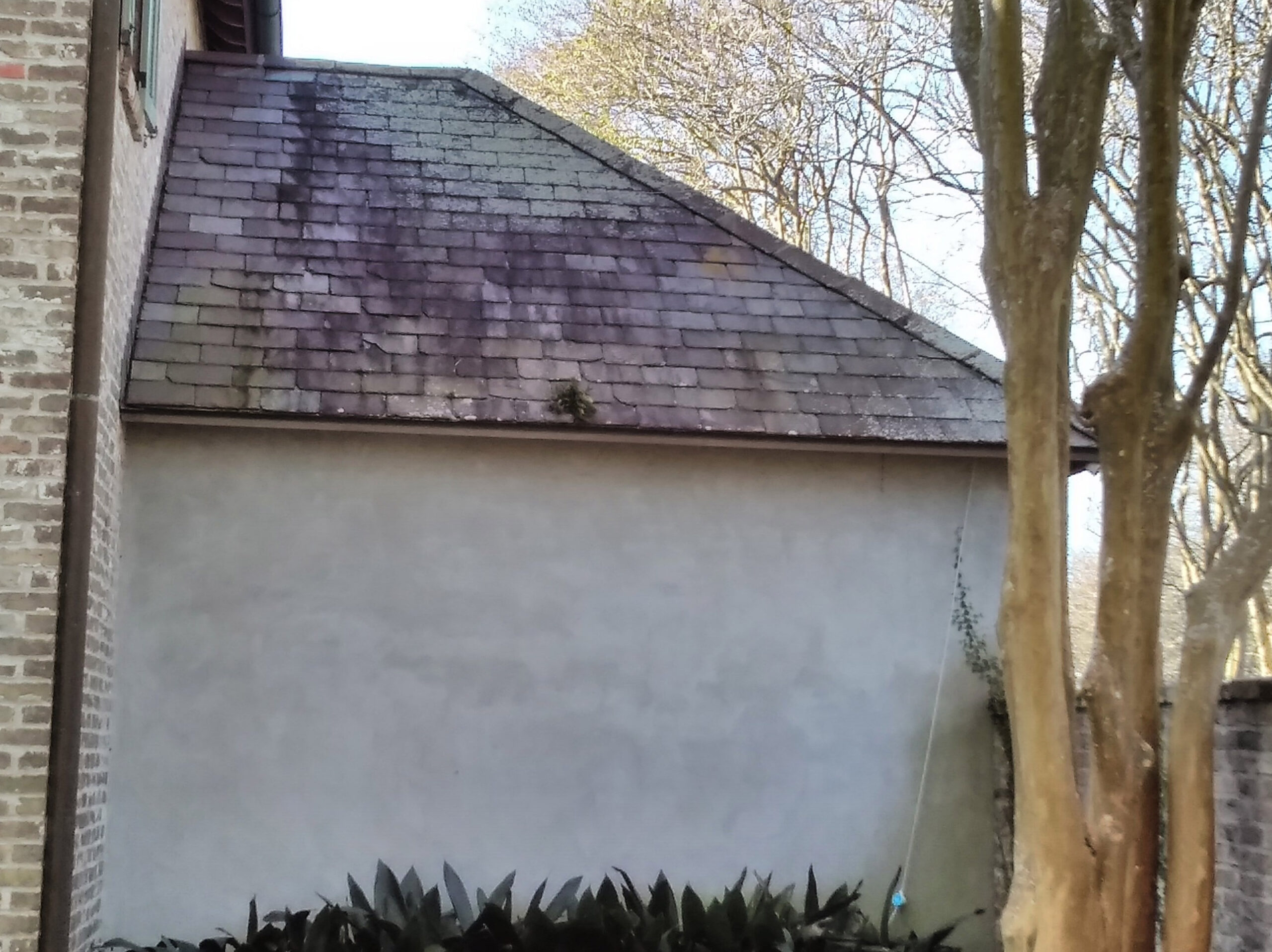 Cajun Soft Wash residential roof cleaning exterior window dirt
