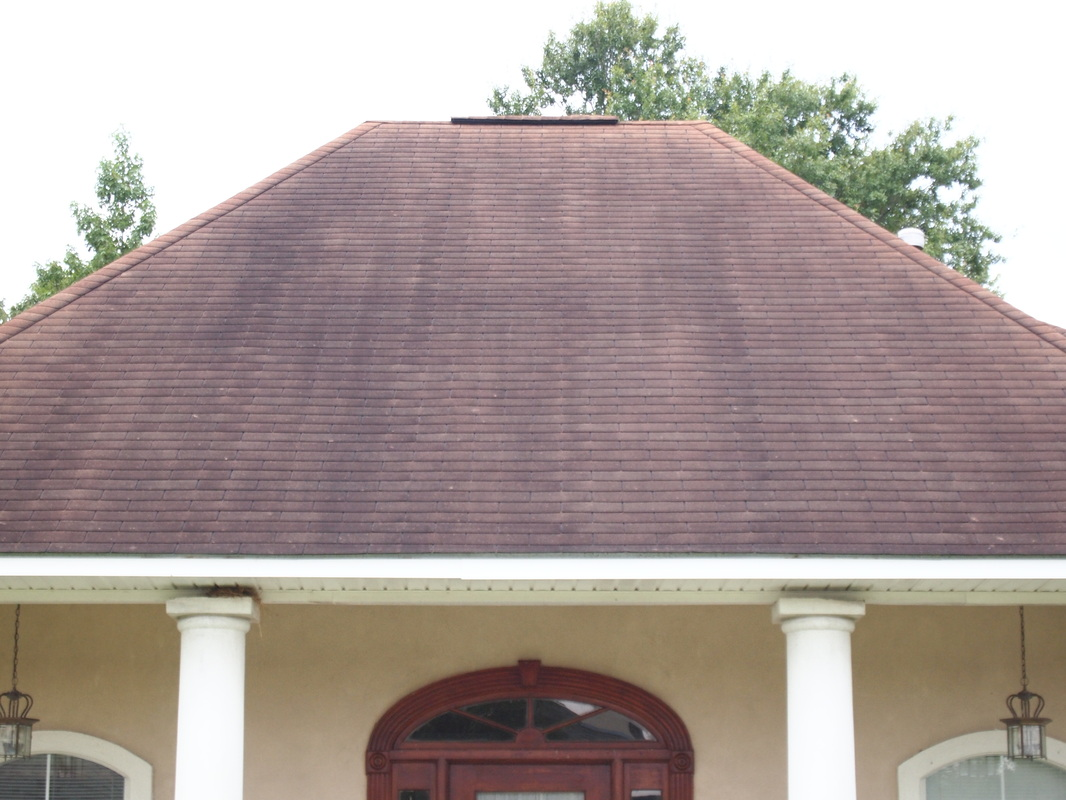 Cajun Soft Wash house Washing exterior soft power wash dirt stain roof