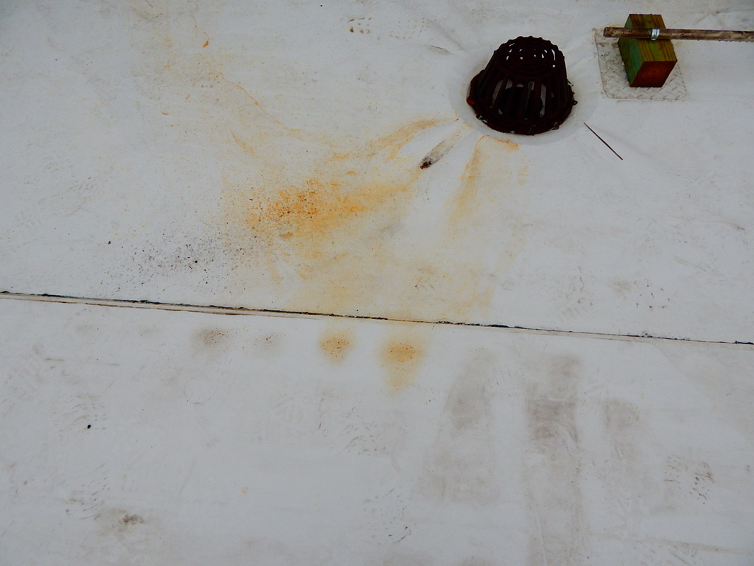 Cajun Soft Wash rust removal after before stains dirty